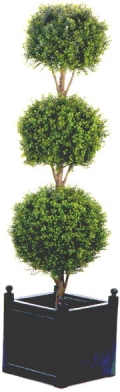 Where to rent Topiary Triple Ball Set of 2 in La Grande OR